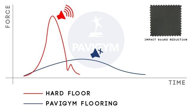 Acoustic by Pavigym sound data tests